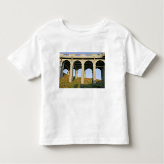 Arched supports Patterson Memorial Bridge T Shirt