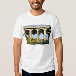 Arched supports Patterson Memorial Bridge T-shirts