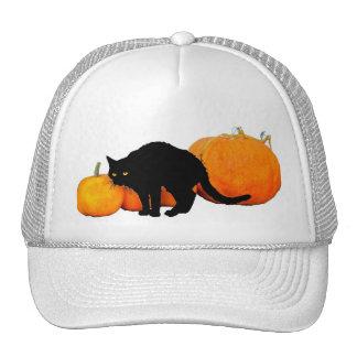 Arching Black Cat and Pumpkins Cap