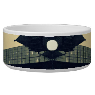 Architectural Detail #1 Pet Bowl
