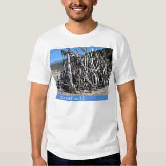 Architecture 101 t shirt