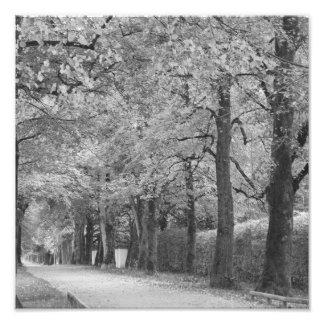 """Archway"" photoprint Photo Print"
