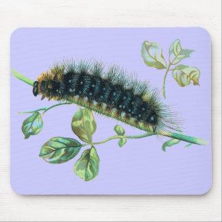 Arctia caja caterpillar mouse pad