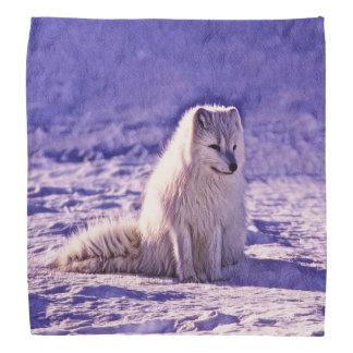 Arctic Fox Bandana