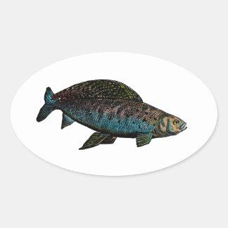 Arctic Grayling Fish Sticker