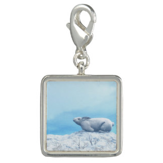 Arctic hare, lepus arcticus, or polar rabbit
