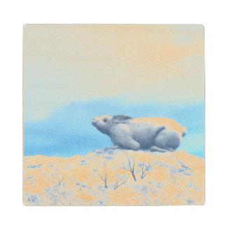 Arctic hare, lepus arcticus, or polar rabbit maple wood coaster