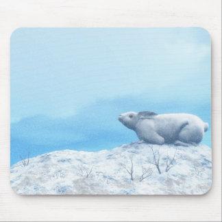 Arctic hare, lepus arcticus, or polar rabbit mouse pad