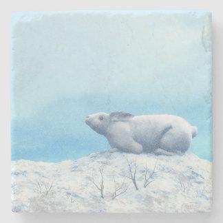 Arctic hare, lepus arcticus, or polar rabbit stone coaster