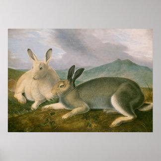 Arctic Hares Couple Landscape Watercolor Oil Poster