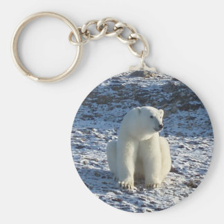 Arctic Polar Bear Key Ring