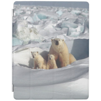 Arctic Polar Bears Cubs Wildlife iPad Smart Cover