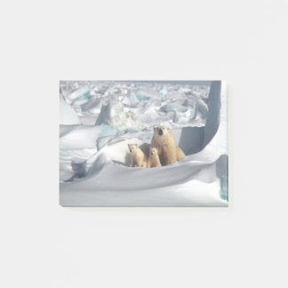 Arctic Polar Bears Mother & Cubs Post-It Notes