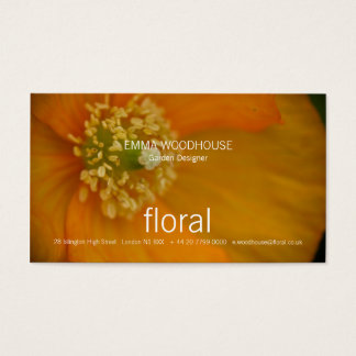 Arctic Poppy • Business Card Template