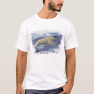 Arctic, Svalbard, Polar Bear extending and T-Shirt