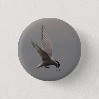 Arctic Tern Badge
