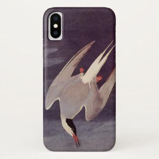 Arctic Tern by John James Audubon, Vintage Birds iPhone X Case