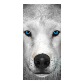 Arctic Wolf Custom Photo Card