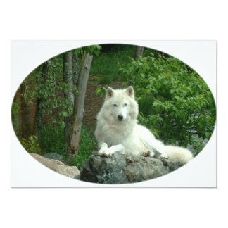 Arctic Wolf Invitation