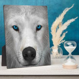 Arctic Wolf Plaque