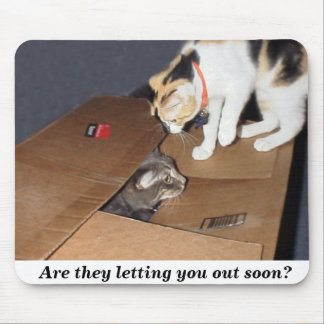 Are they letting you out soon? mouse pad