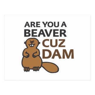 Are You A Beaver Cuz Dam Postcard