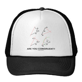Are You Congruent? (Congruent Angles) Trucker Hats