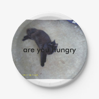 are you hungry plates 7 inch paper plate