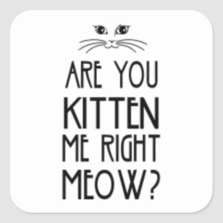 Are You Kitten Me Right Meow Funny Cat Square Sticker