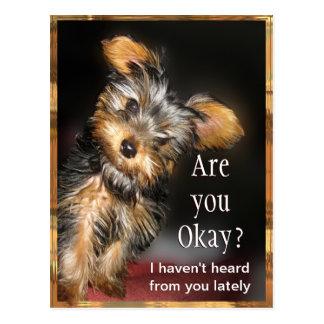 Are you Okay? Customizable Postcard