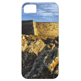Areosa fortress iPhone 5 case