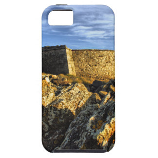 Areosa fortress iPhone 5 cover