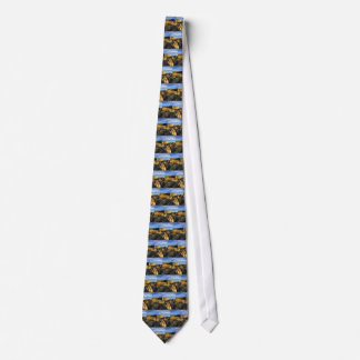 Areosa fortress tie