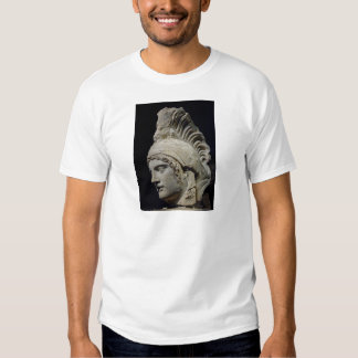 Ares Tee Shirts