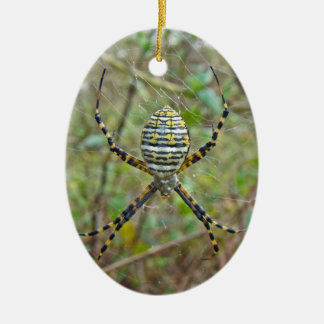 Argiope trifasciata Orb Weaver Spider Ceramic Ornament