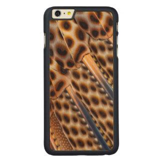 Argus Pheasant Feather Design Carved Maple iPhone 6 Plus Case