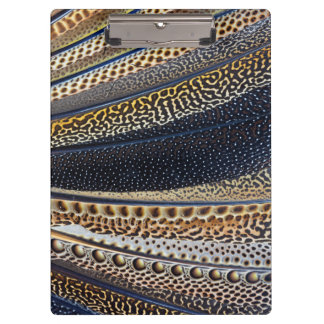 Argus Pheasant wing feathers Clipboard