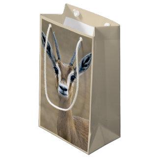 Ariel Gift Bag