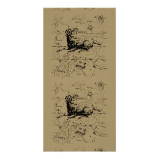 Aries Constellation Hevelius 1690 March 21 - Apr19 Photo Card