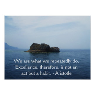 Aristotle Excellence Quotation Poster