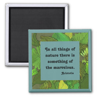 Aristotle quotation on nature magnet