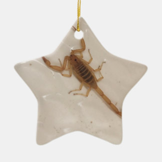 Arizona Bark Scorpion Ceramic Ornament