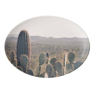 Arizona Cacti    Serving Platter Porcelain Serving Platter
