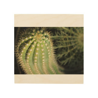 Arizona Cacti Wood Wall Decor