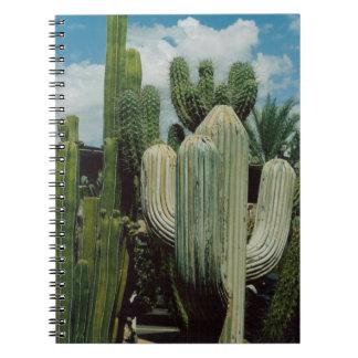 Arizona Cactus Notebook