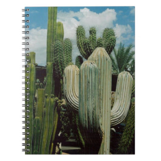 Arizona Cactus Notebooks