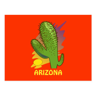 ARIZONA CACTUS POSTCARD