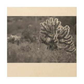 Arizona Cholla Cactus Wood Print