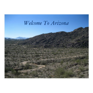 Arizona Desert Beauty Postcard