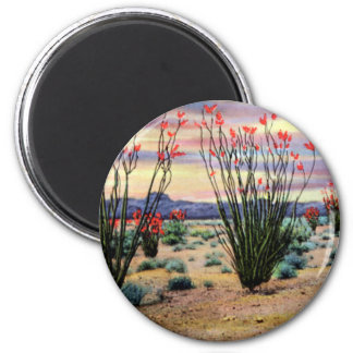Arizona Desert Ocotillos in Bloom Magnet